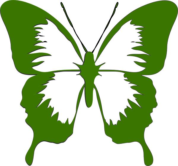 bướm màu xanh lá cây có ý nghĩa gì